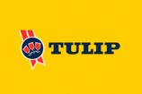 Logo 0014 Tulip